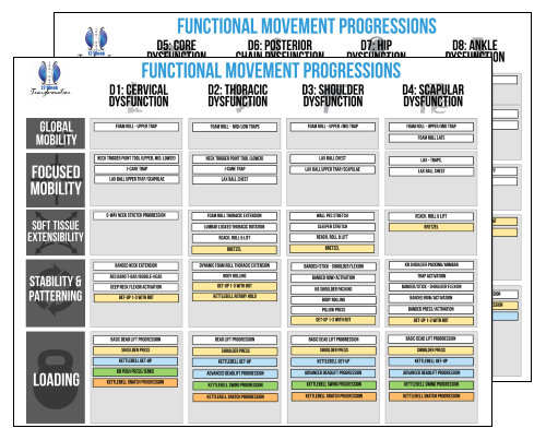 MoveNow University Functional Movement System for Chiropractors Corrective Exercises